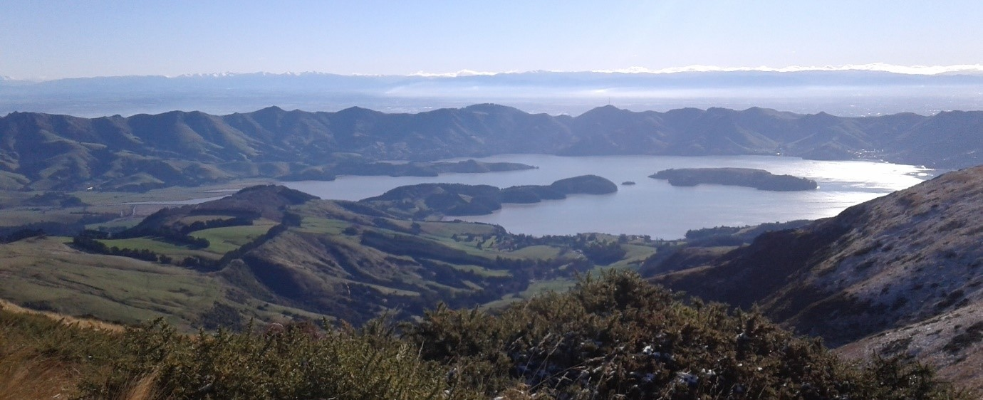 View from Mt Herbert